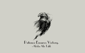 motivational, Islam, quote, Imam, Ali ibn Abi Talib, eagle