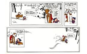comics, Calvin and Hobbes