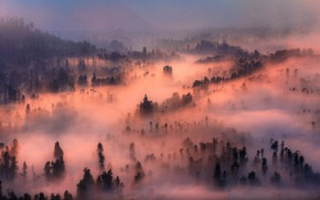 mist, sunrise, mountain, landscape, morning, nature