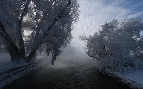 nature, frost, river, shrubs, cold, mist