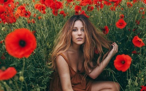 poppies, field, girl, plants, sitting, girl outdoors