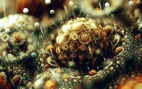 abstract, sphere, digital art, 3D, fractal, bubbles