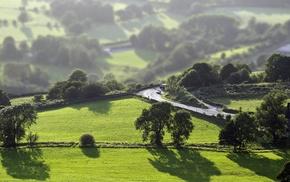 nature, grass, cycling, tilt shift, field, green