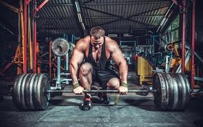 men, gyms, muscles, sports, sport, Bodybuilder