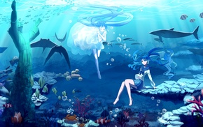 anime girls, fish, white dress, long hair, Hatsune Miku, anime