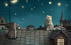 cat, digital art, house, rooftops, moon, crescent moon