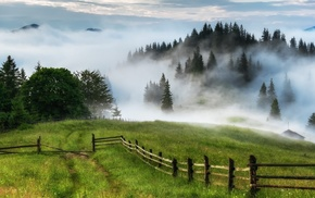 trees, hut, nature, hill, grass, fence