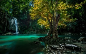 nature, waterfall, trees, tropical, green, landscape