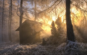sunrise, winter, trees, frost, nature, hut