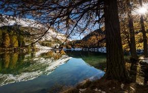 trees, snowy peak, nature, landscape, sun rays, water