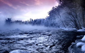 trees, winter, river, nature, mist, water