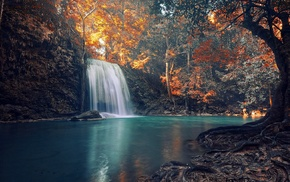 colorful, landscape, nature, waterfall, roots, tropical