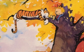 Calvin and Hobbes, comics