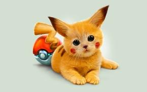 Pikachu, Pokballs, Pokemon