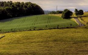 field, landscape, photography, nature