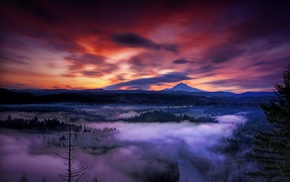 snowy peak, clouds, Oregon, forest, nature, mountain