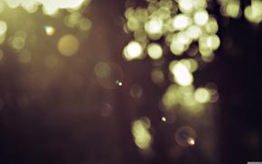 lens flare, lights