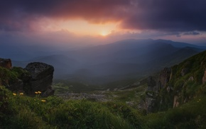Ukraine, mist, wildflowers, Carpathians, sunset, landscape