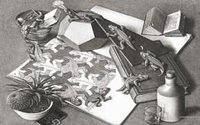 books, M. C. Escher, bottles, psychedelic, optical illusion, animals