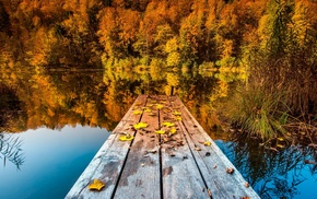 wooden surface, fall, pier, nature, trees, reflection