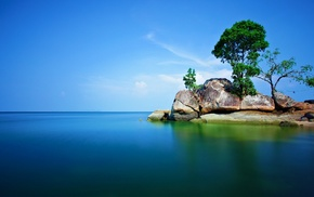 trees, landscape, alone, sea, rock, nature