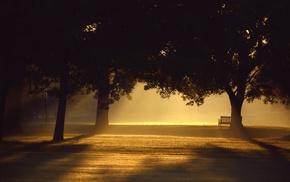 mist, trees, photography, sunlight, sunset, bench