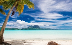 mountain, sea, Bora Bora, landscape, palm trees, beach