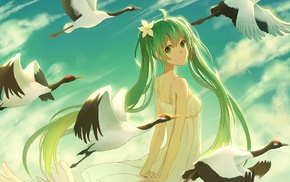 flower in hair, clouds, Hatsune Miku, long hair, anime, birds