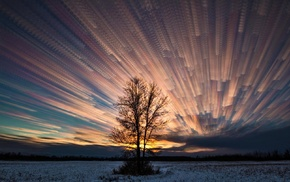 nature, snow, trees, sky, clouds, sunrise