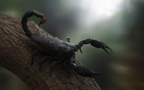 digital art, depth of field, wood, nature, low poly, scorpions