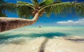 summer, tropical, nature, water, landscape, beach