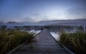 sunrise, grass, morning, mist, wetland, walkway