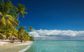 nature, island, clouds, beach, summer, palm trees