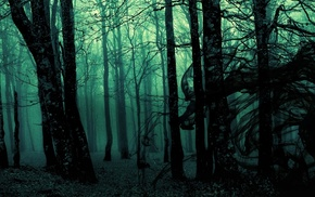 forest, dark, trees, landscape, gloomy, photo manipulation
