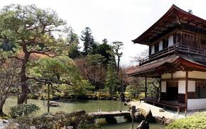garden, Japanese Garden