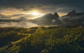 nature, shrubs, clouds, mist, sun rays, mountain