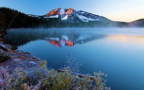 frost, calm, landscape, lake, shrubs, trees