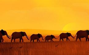 digitalocean, elephants