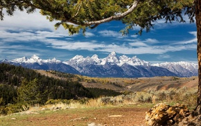 Wyoming, landscape, forest, clouds, Grand Teton National Park, trees