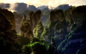 forest, limestone, mountain, nature, landscape, China