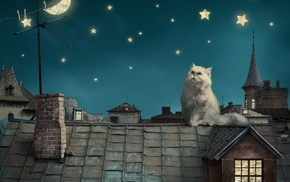 fantasy art, stars, night, cat, rooftops, moon
