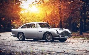 Aston Martin DB5, sunset, Aston Martin, car, fall