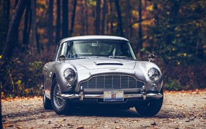 road, forest, Aston Martin DB5, Aston Martin, fall, car