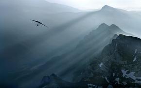 flying, nature, landscape, mist, sun rays, air
