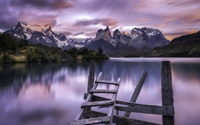 Chile, wood, shrubs, long exposure, Torres del Paine, summer
