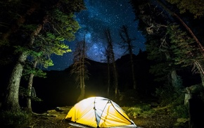 trees, camping, long exposure, starry night, forest, blue