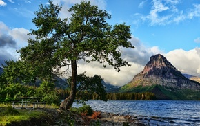 forest, lake, hill, nature, Glacier National Park, mountain