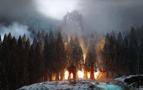 dragon, Elder Scrolls, video games, trees, The Elder Scrolls V Skyrim, fire