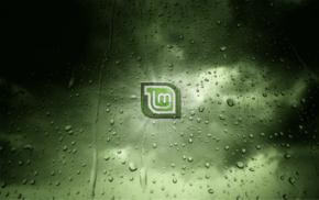 Linux, GNU, Linux Mint