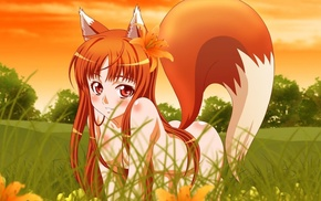 nude, anime girls, anime, wolf girls, Holo, Spice and Wolf